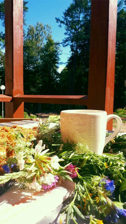 Наши услуги - вкусное кофе в усадьбе Лиелборне