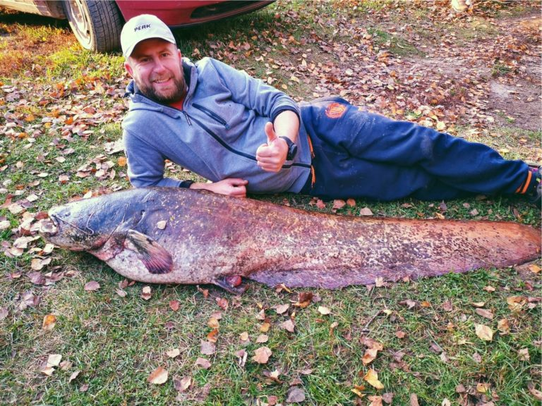 fishing in Latvia, fishing in Latgale, fish in daugava, catfish in daugaval