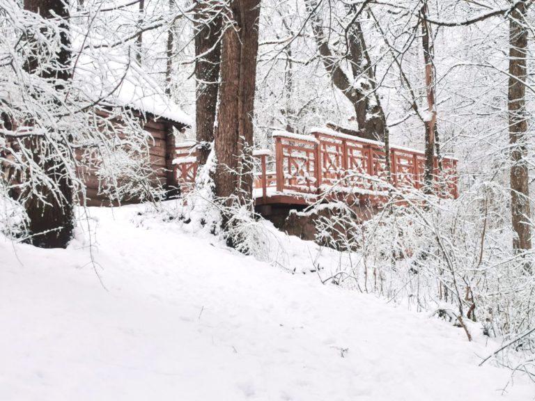 Muižas parks, ziema Lielbornes muiža, daba