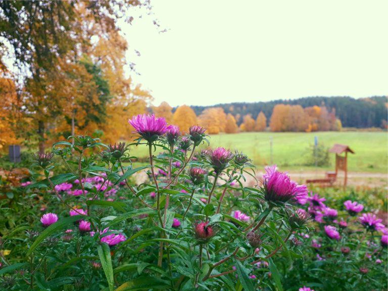 visit Latgale, explore Daugavpils, Excursions Lielborne manor, nature park Daugavas loki,