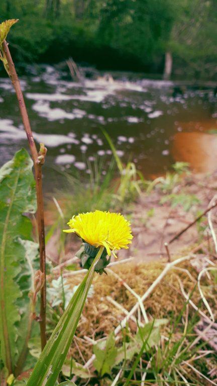 Borne river adventure hiking, Latgale